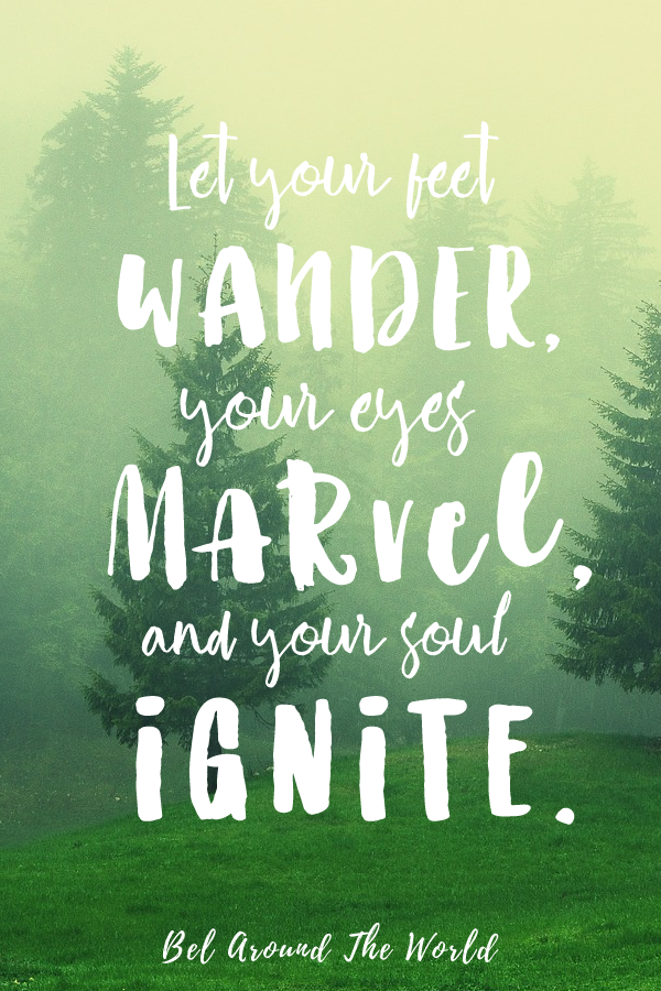 253 Inspirational Travel Quotes from REAL Travellers to ...